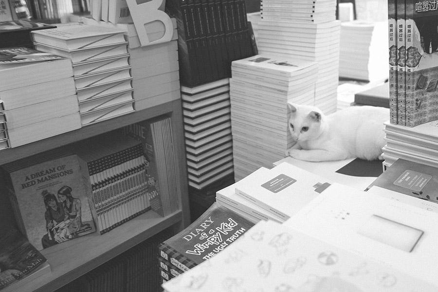 bookstore-03